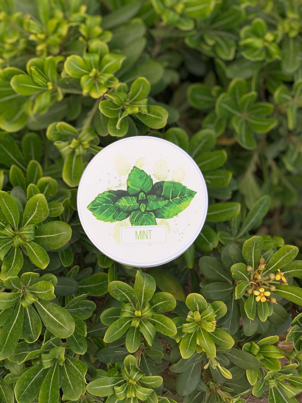 Mint scrub package design
